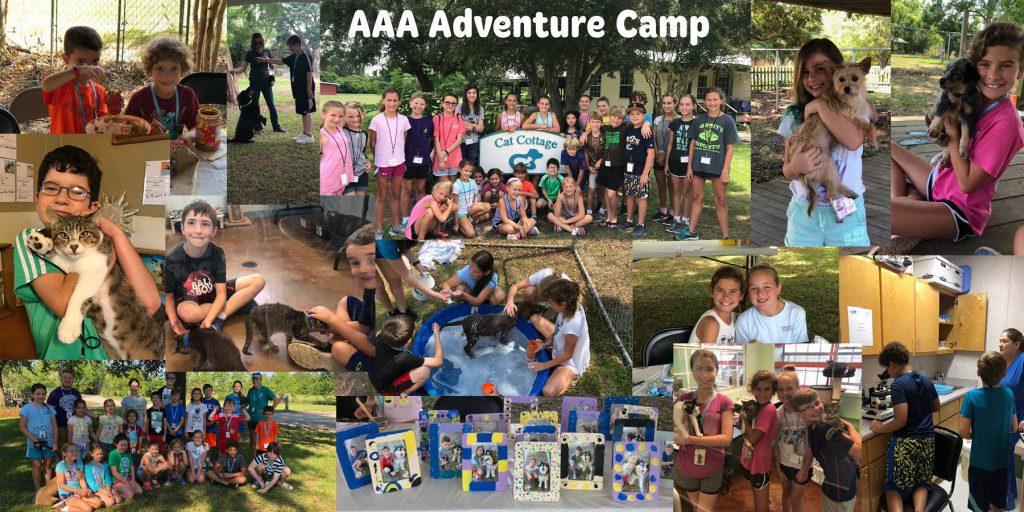 Acadiana Animal Aid's Adventure Camp Session 1